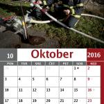 koledar11